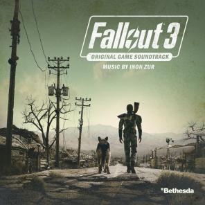 #5: Fallout 3 (Custom)