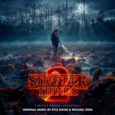 #5: Stranger Things (Custom)
