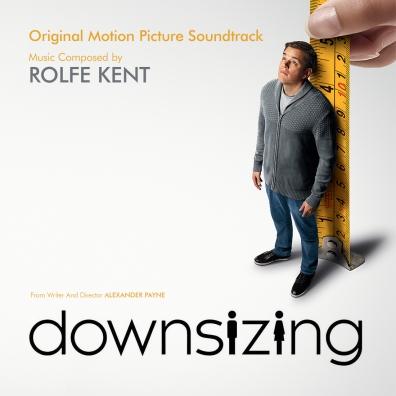 #2: Downsizing (Custom)