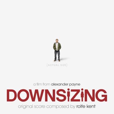 #3: Downsizing (Custom)