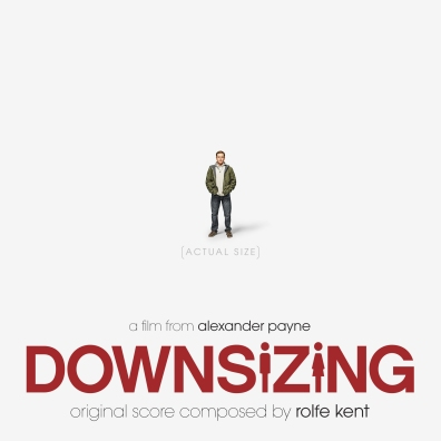 #3: Downsizing (Custom)