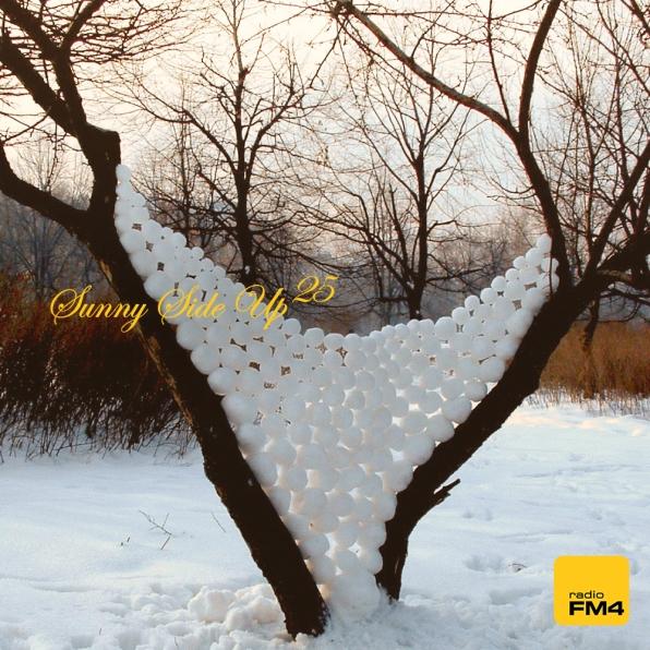 #31: FM4 Sunny Side Up, Vol. 25 (Custom)